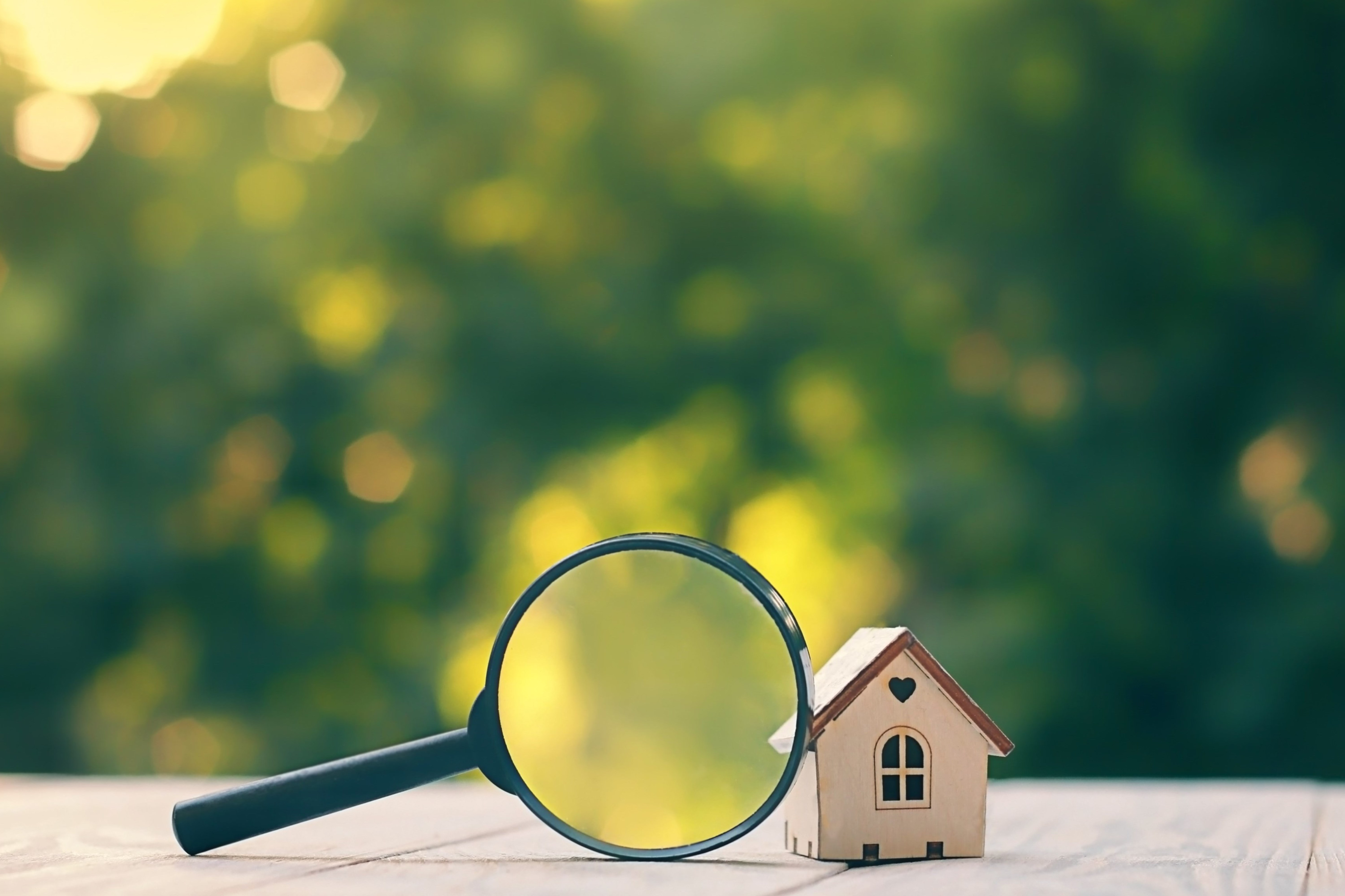 House with a magnify glass